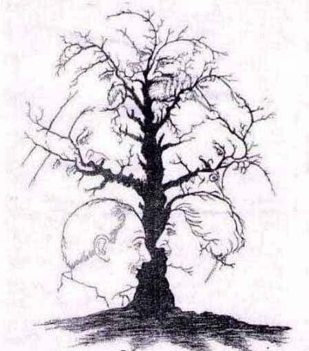 تست هوش تصویری(درخت)